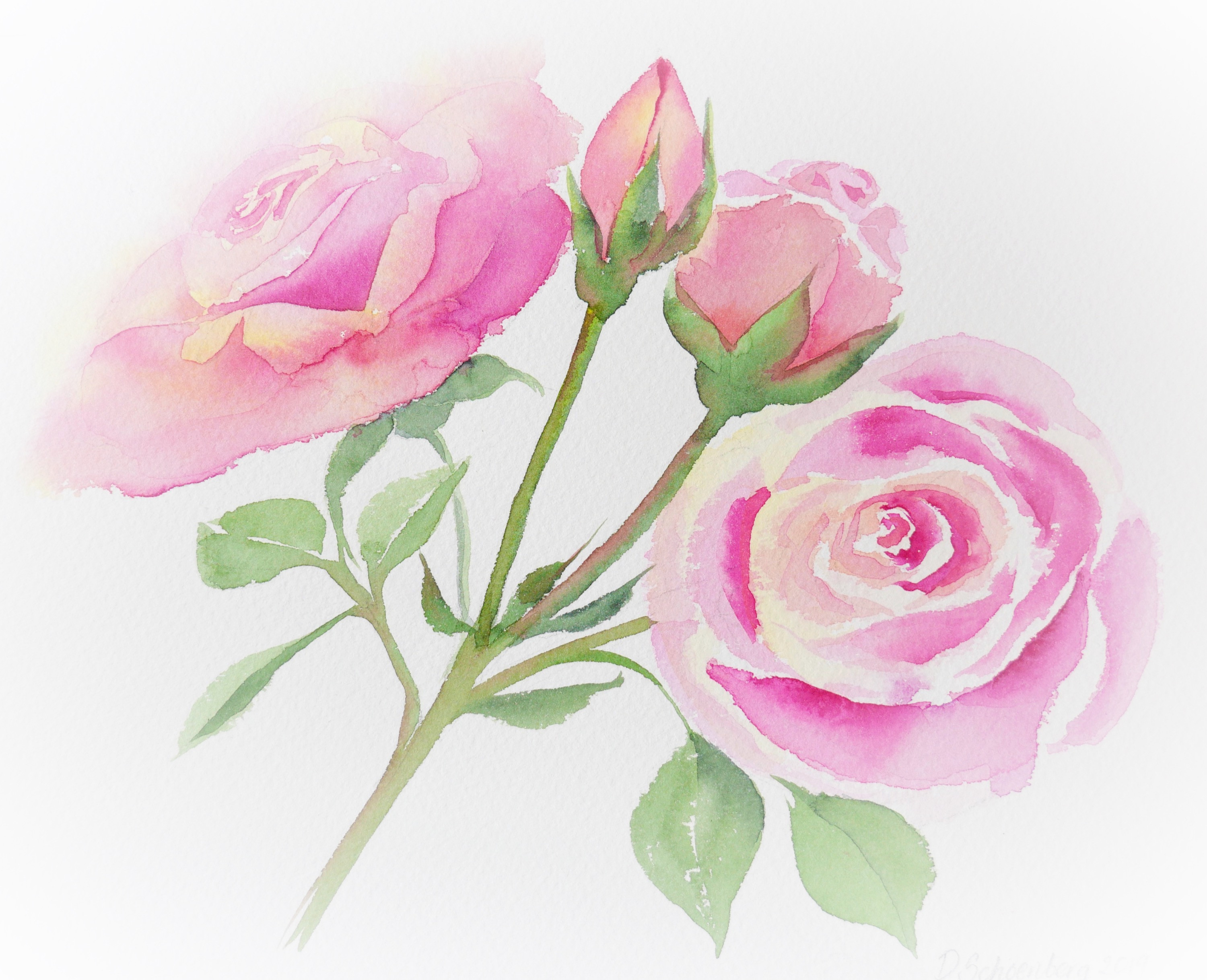 Flower Painting Workshop 30th July 2021
