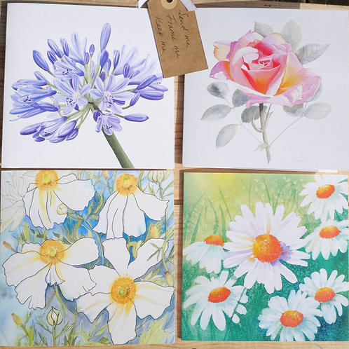 Summer Floral Collection 8 Cards: Blank inside for any occasion.