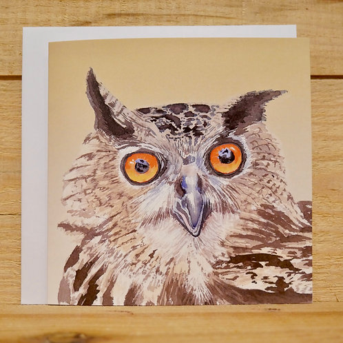 Owl. Gift card