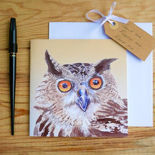 Owl. Gift card