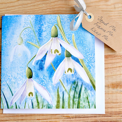Snowdrops gift card, blank inside for your message, suitable for any occasion.