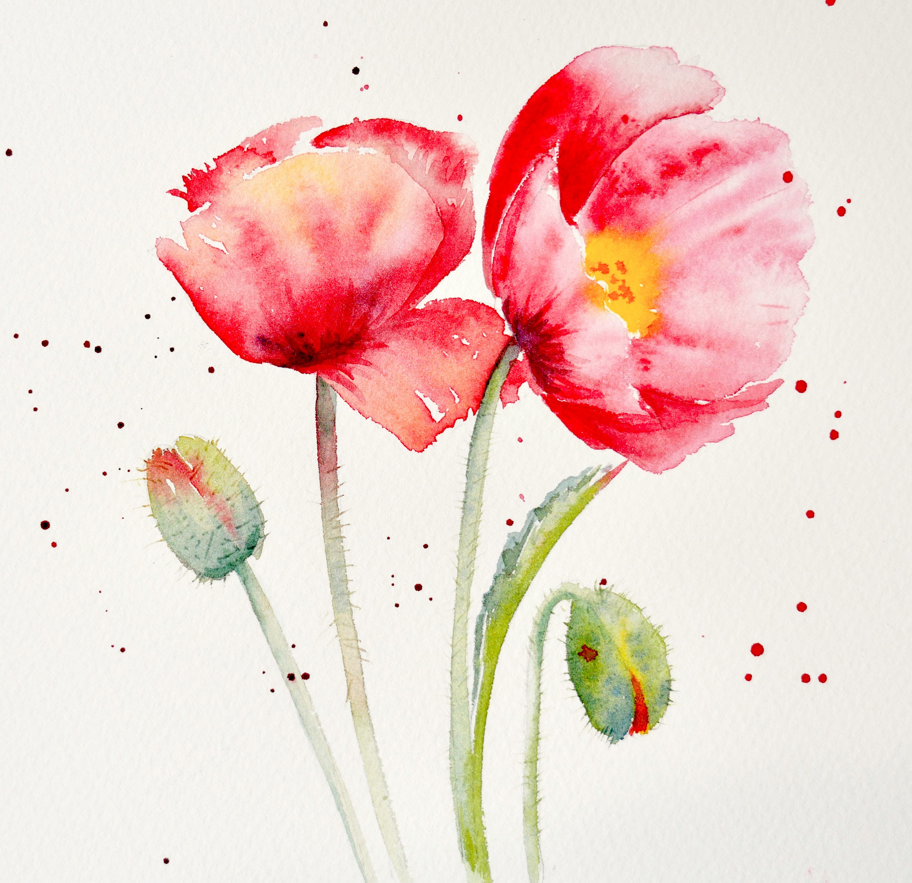 Flower Painting Workshop 29th July 2021