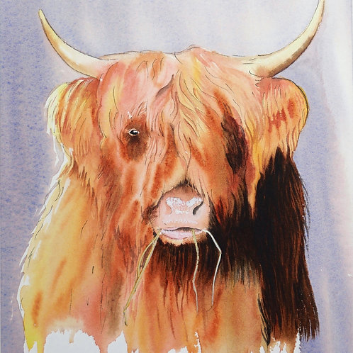 Highland Cow. Original Watercolour Painting