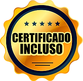 CERTIFICADO INCLUSO DOURADO.png