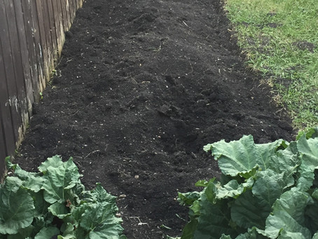 Plan a Garden