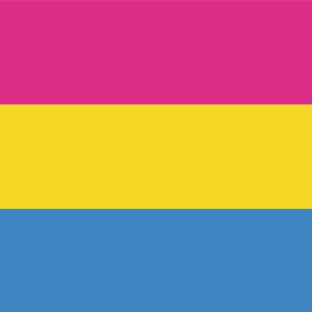 Die Panflagge  besteht aus drei gleichgrossen horizontalen Streifen in den Farben (von Oben nach Unten) Rosa, Gelb und Hellblau.