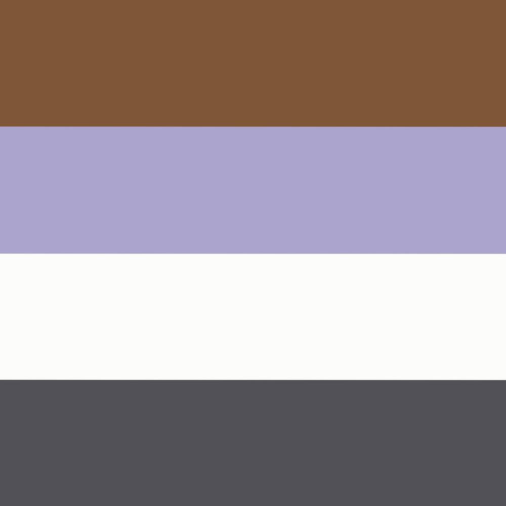 Die Apagenderflagge besteht aus vier horizontalen Streifen in den Farben (von Oben nach Unten) Braun, hellem Lila, weiss und Antrazit.