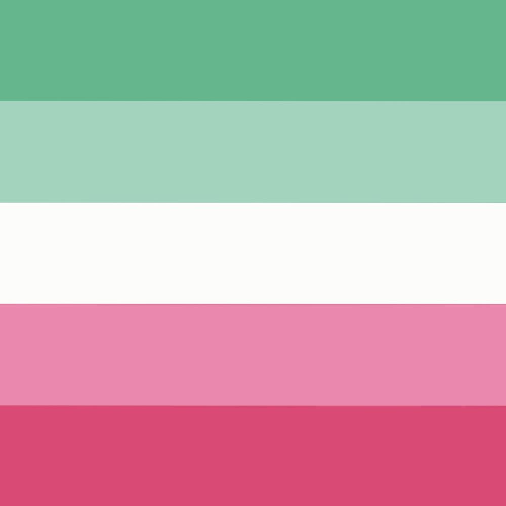 Die Abrosexuellflagge besteht aus fünf gleichgrossen horizontalen Steifen. Von Oben nach Unten. Mintgrün, hell Mintgrün, Weiss, Lachsrosa und Rosa.