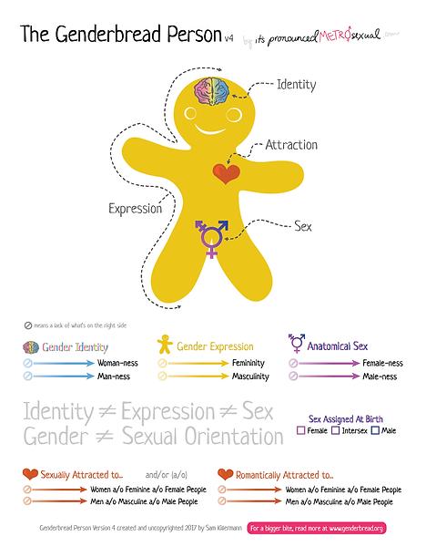 Genderbread-Person-v4.png