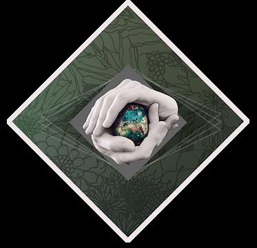 DiamondLogo-SeeingSessions-border (1) copy.png