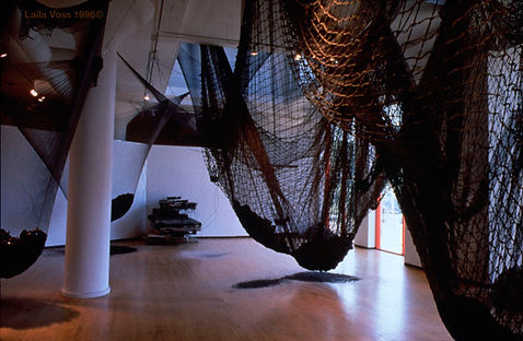 A Chaotic Symphony: The Catch-All Net