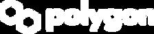 polygon_logo White.png