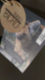Banco bicho | Lobo-guará