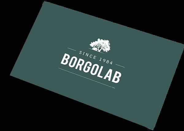 Biglietto da visita BorgoLab