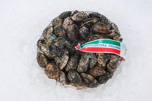 Vongole lupini pescato Adriatico Sacchetti da 1kg