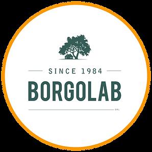 Logo Design BorgoLab