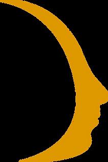 profilo giallo.png