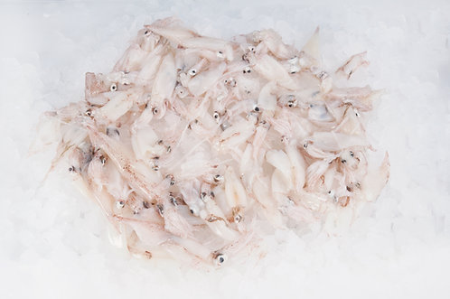 Calamaretto spillo Adriatico fresco 250gr ca.
