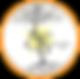 agenzia di comunicazione, realizzazione siti web