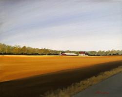 Artist Michael McHugh