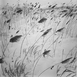 Artist Richard Calvo