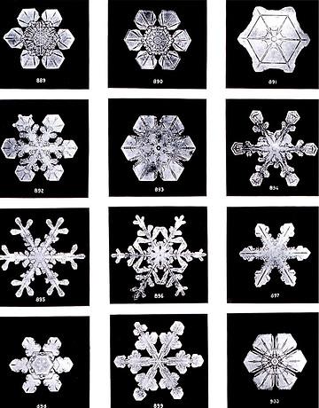 Eiskristalle