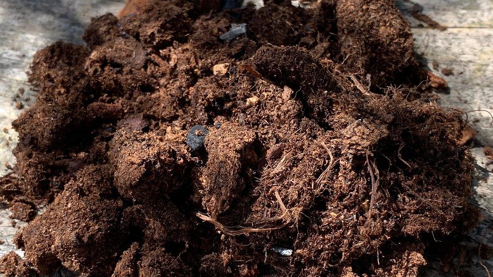 Premium Bio Substrate (100g)