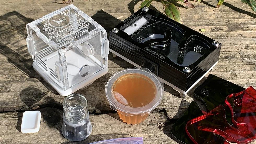 BlackOut Essentials Kit