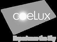 CoeLux_Logo copy.png