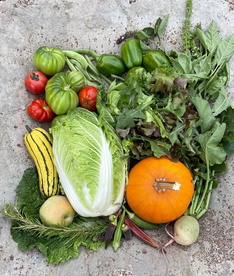 From the Garden this Week, October 7, 2021...