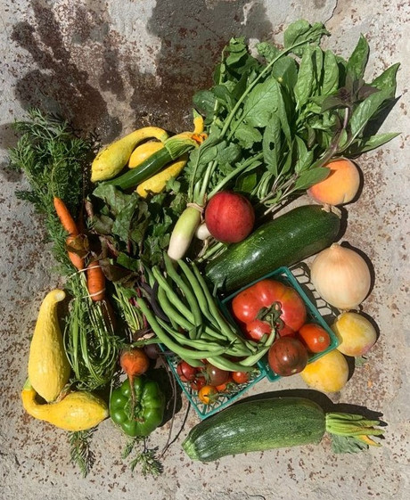 From the Garden this Week, July 8, 2021...