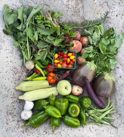 From the Garden this Week, September 23, 2021...