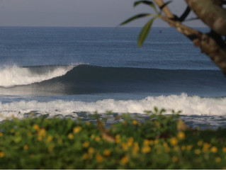 medewi surf camp