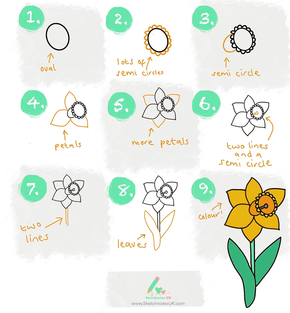 How to draw a daffodil.JPG