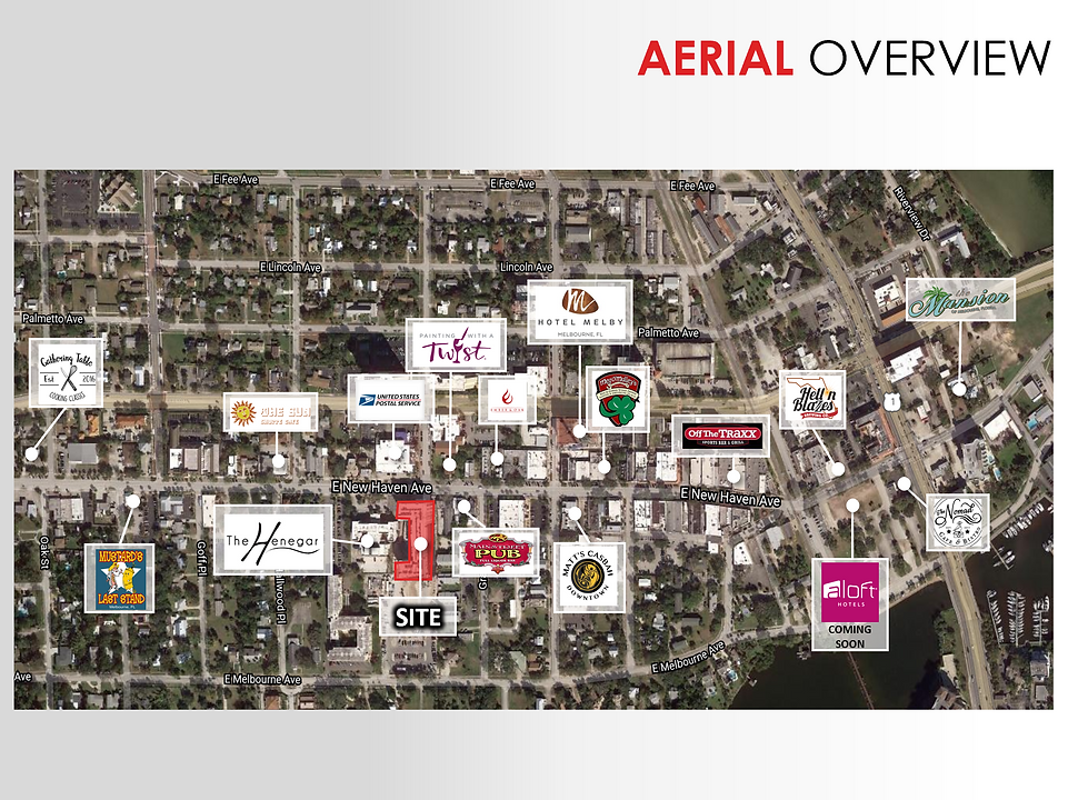 aerial overview.PNG