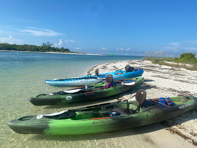 naples kayak tours