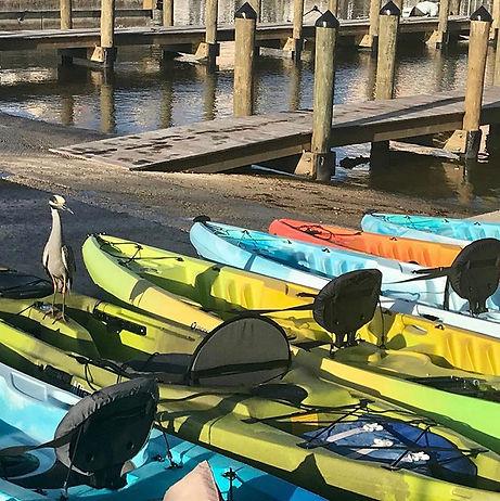Naples kayak rentals