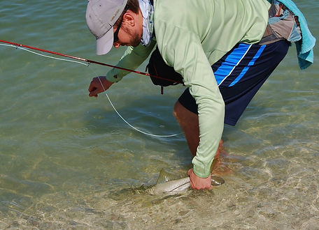 Naples fly fishing for beach snook