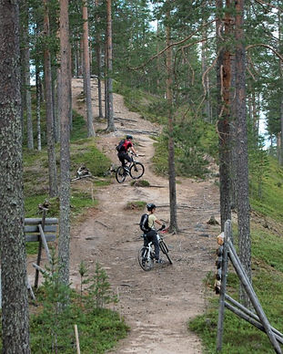 Maastopyöräilijöitä metsässä, Syöte MTB