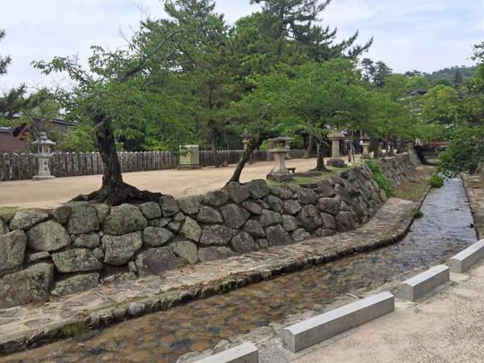 厳島神社裏手の並木路