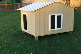 Dog House XL - with door - St. Louis, MO - A+ Builds