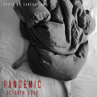 Pandemic poster.jpg