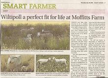 Moffits farm news.JPG