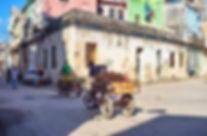 centro pic.jpg