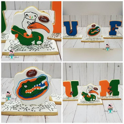 UM vs UF Are you ready_ Who will win_ Sw