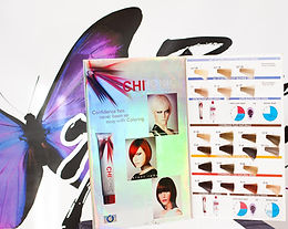 Professional Hair Coloring Class for Natural and Highly Textured Hair