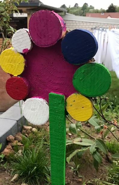 06-Blume im Beet.JPG