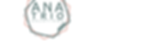 ANA Logo_980x255-Tricolor-WhiteBkgd-Bold