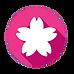 Sakura Accounting Logo