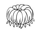 flower head 7.png